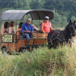 Een andere manier om het paardrijden te ontdekken