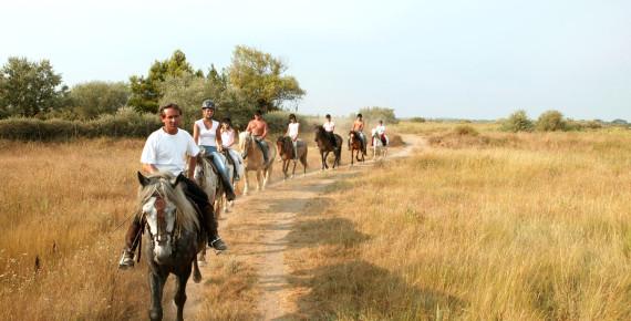 1 uur paardrijden dwars door het natuurgebied