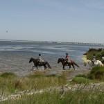 2 hours on horseback to explore nature in the Etange