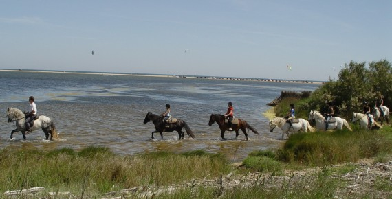 2 hours on horseback to explore nature in the Etange