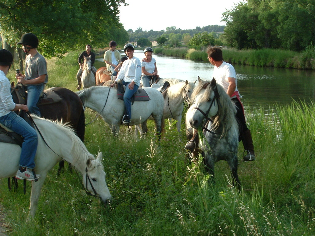 2 uur paardrijervaring  opdoen met een sportieve elemen